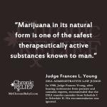 Judge Young quote