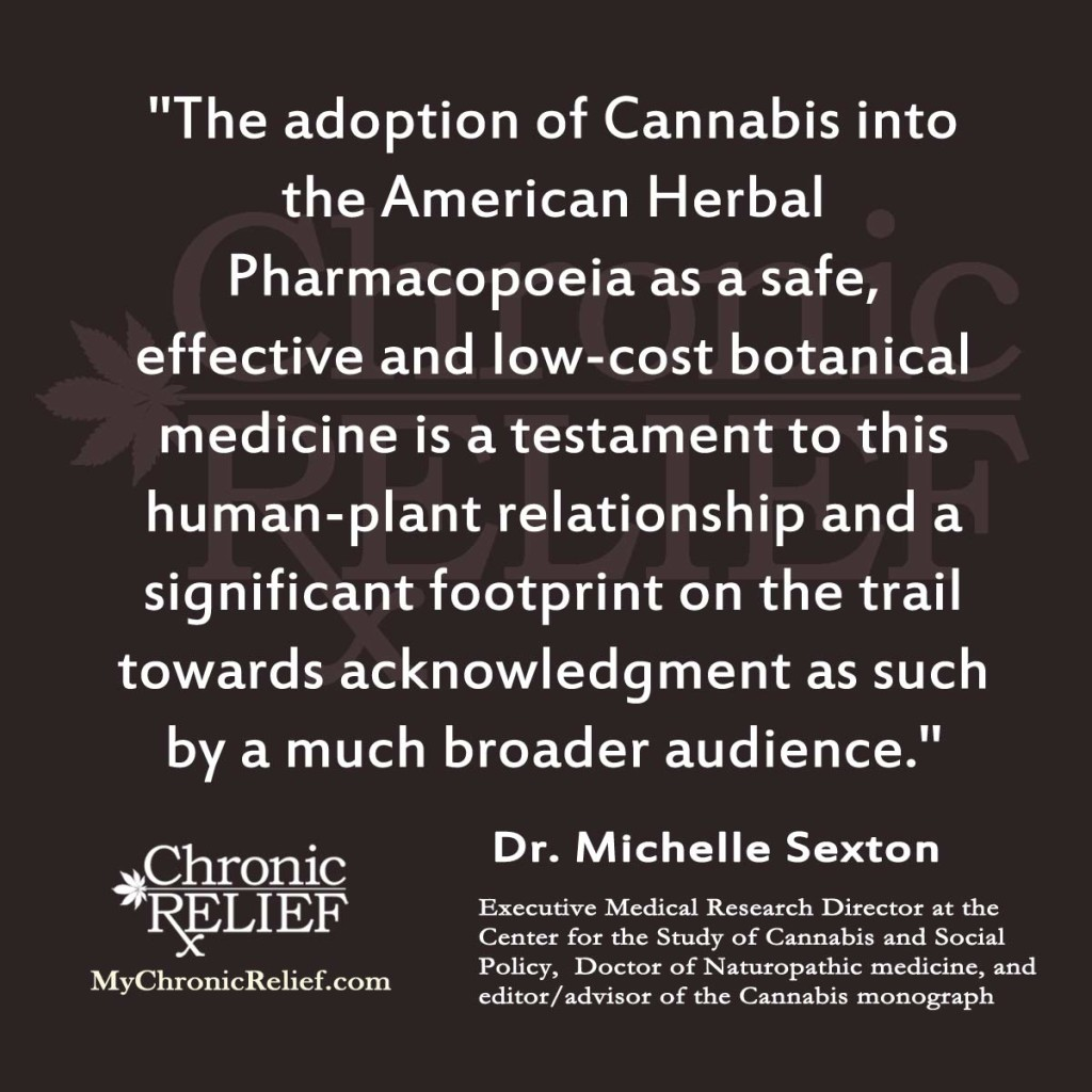 Michelle Sexton quote