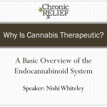 Overview of Endocannabinoid System