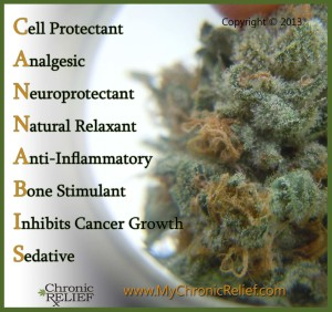 Cannabis & It's Healing Powers