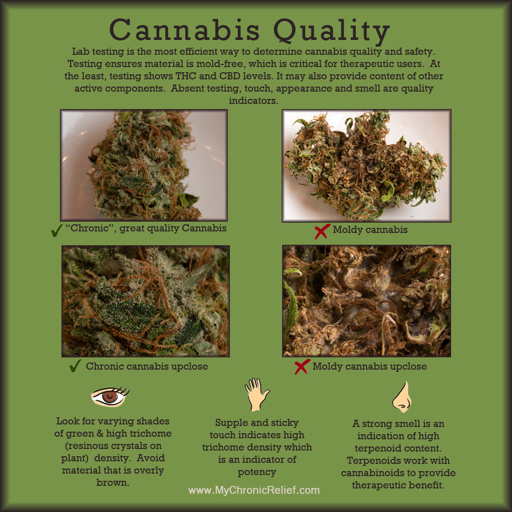 Cannabis Quality Chronic Relief What Is Medical