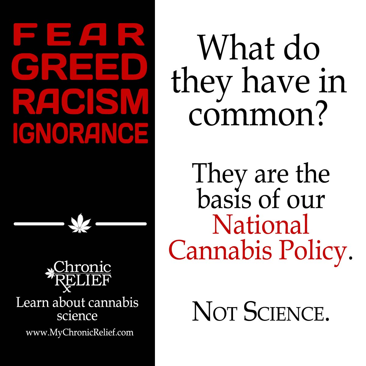 ignorance greed and the american media essay Avoidance and rejection really pump up the laughs for historical ignorance, political stupidity, and greed and, in the eyes of most of the world, those three have become the chief traits of the american people -- historical ignorance, political stupidity, and greed.