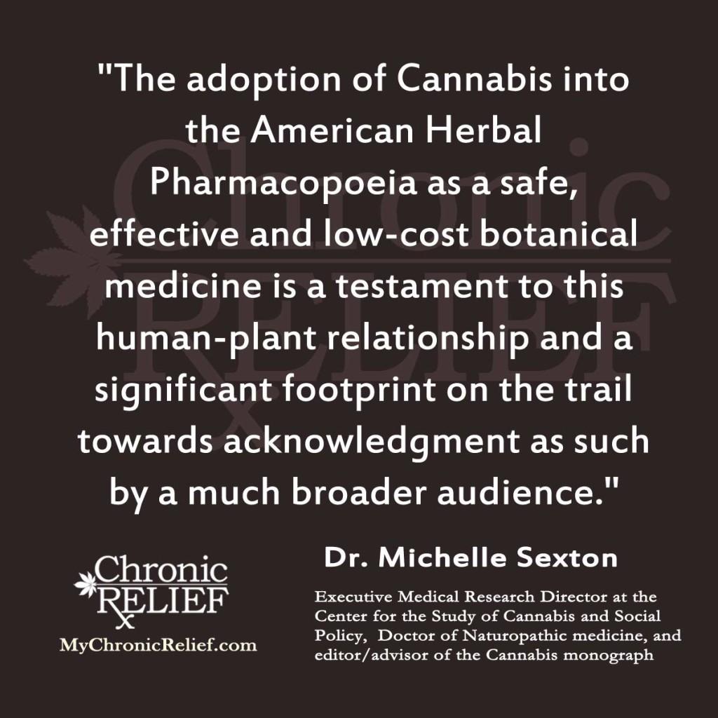 Michelle Sexton quote