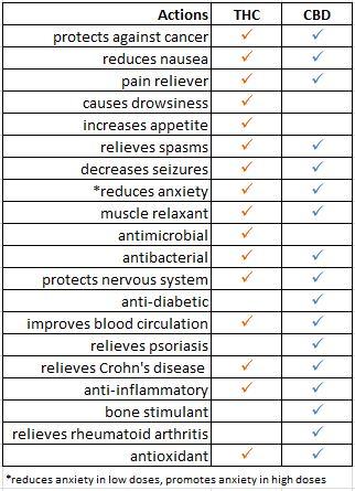 THC & CBD Chart